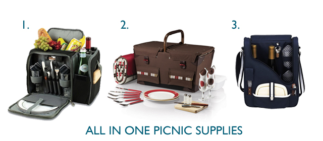 All in one picnic supplies