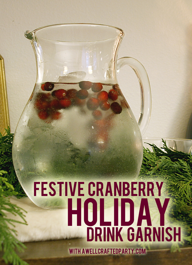 Festive Holiday Drink Garnish // A Well Crafted Party