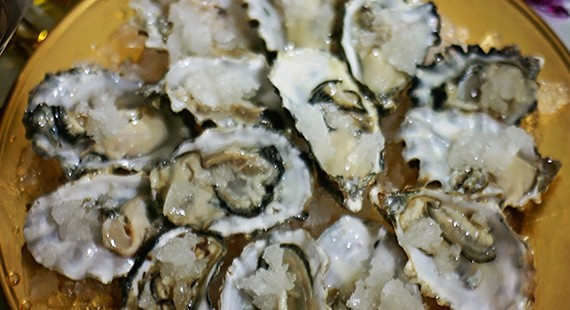AWCP-Oysters-featured